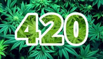 Qu'est-ce que le 420 ?,420