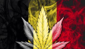 легализация Бельгия