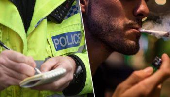 полиция, потребители каннабиса