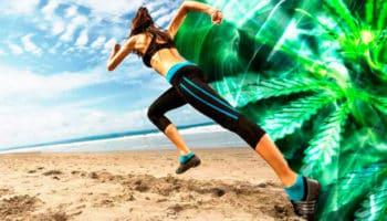 motion, fysisk aktivitet, forbrug, motivation