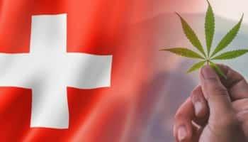 İsviçre'de esrar mevzuatı, İsviçre'de esrar yasallaştırması, İsviçre'de esrar mevzuatı, İsviçre'de cbd mevzuatı, İsviçre'de cbd mevzuatı, İsviçre'de esrar mevzuatı 2018, İsviçre'de esrar yönetmeliği, İsviçre esrar yönetmeliği, İsviçre'de esrar araştırması, İsviçre'de esrar araştırması, İsviçre'de esrar araştırması, İsviçre yasasında esrar araştırması, İsviçre yasasında esrar araştırması
