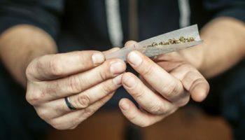 политика, легкие наркотики, опрос