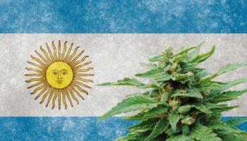 handelskammer, Argentina