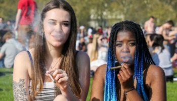 Cannabaco, geurloze cannabis