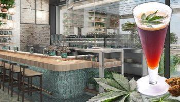 legalización, restaurante legal