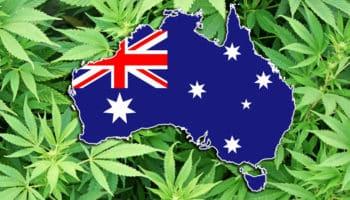 cannabis, Australië