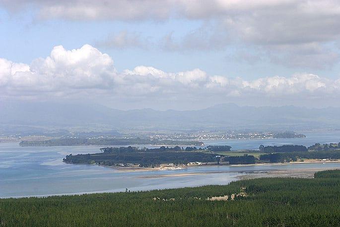 Нова Зеландія, Матакана