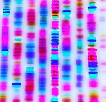 risequenziamento del genoma