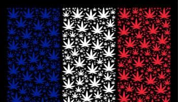 débat du cannabis
