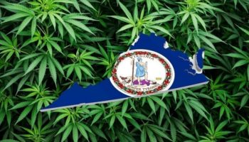 Virginia legaliseert, Virginia legaliseert cannabis
