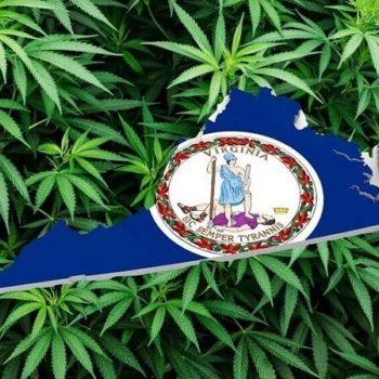 la Virginie légalise,Virginie légalise cannabis