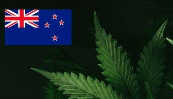 légalisation,Nouvelle-Zélande