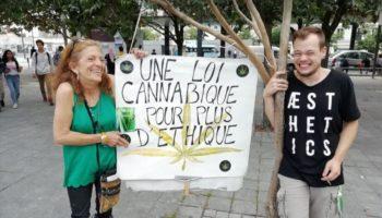 Assemblée nationale,expérimentation du cannabis en France