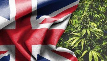 легализация, медицинский каннабис в Великобритании