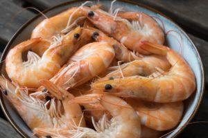alimentation des crevettes,remplacer le maïs