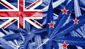 voter sur la légalisation,Nouvelle-Zélande légalisation