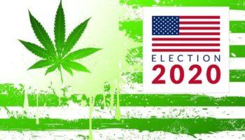 ΗΠΑ Νομιμοποίηση 2020, εκλογές στις ΗΠΑ