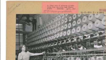 Коноплі в 1940-х роках, історія конопель
