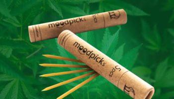 cannabissticks, TrichomeShell, moodpick, cannabis-tandstikker