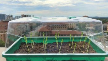 geler til stede i jorden, gel-polymer hybrider, ekstraher vand fra luften, selvvandende jorden, autonomt landbrug