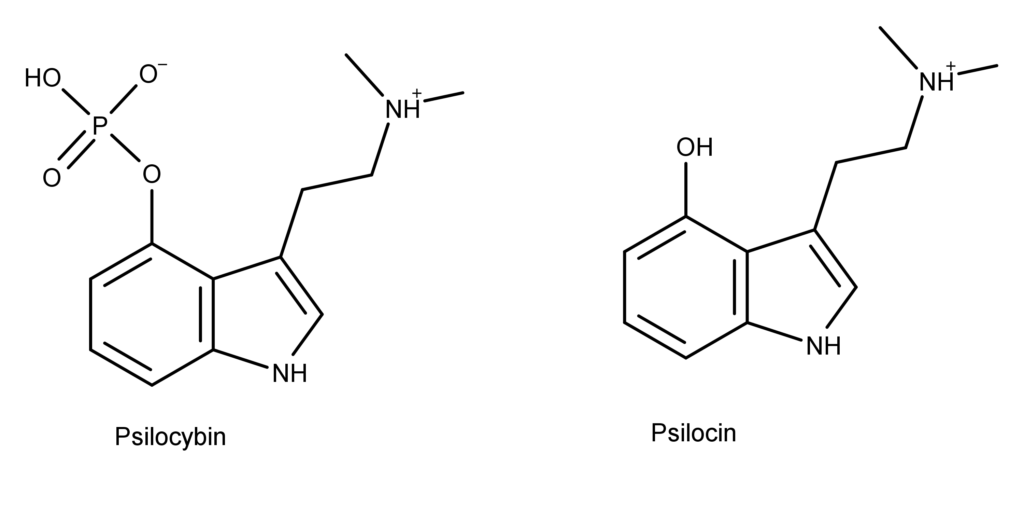 3000 Psilocybin And Psilocin