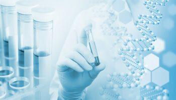 cannabis genome 2