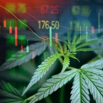 investeer in cannabis