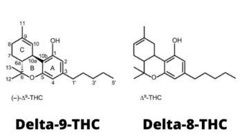 delta8 tetra 9