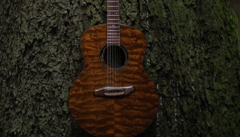 hemp joiguitars