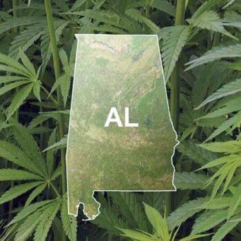 μαριχουάνα αλαμπάμα