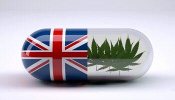 CBD Market Великобритания